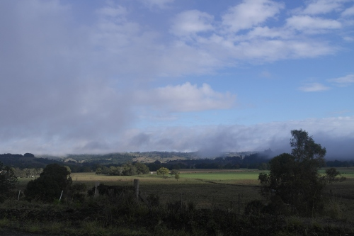 We left plenty early. This is some low cloud down the road from our house