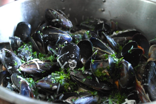mussels with bacon, apple cider and cream