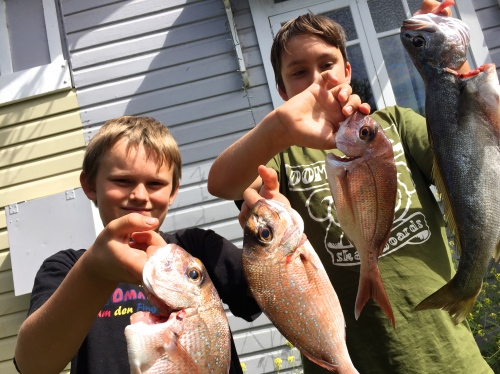 Mandatory pic of kids with fish